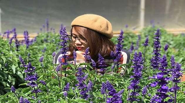 Làng hoa Vạn Thành tour ngoại thành Đà Lạt