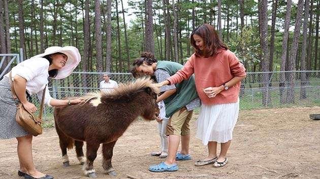 Tham quan sở thú Zoodoo Đà Lạt