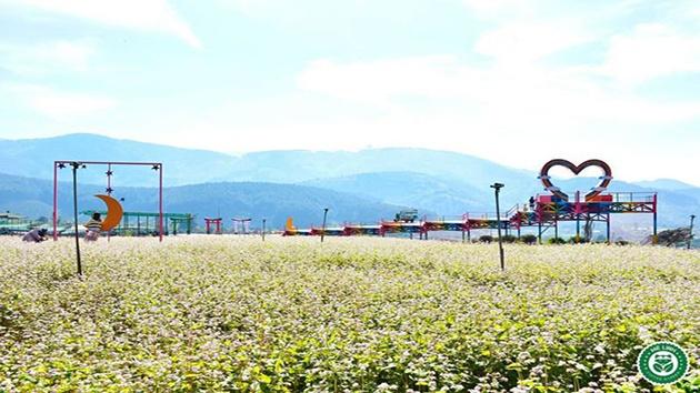 Mê Linh Coffee Garden Đà Lạt có gì HOT?