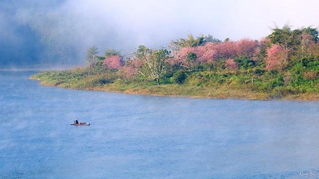 Tham quan du lịch tại hồ Tuyền Lâm