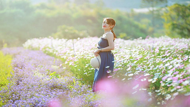 F cánh đồng hoa Đà Lạt có đúng như lời đồn?