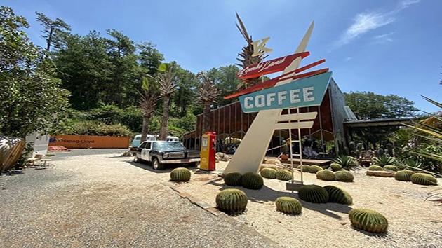 Hình ảnh đẹp tại Kombi Land Coffe Đà Lạt