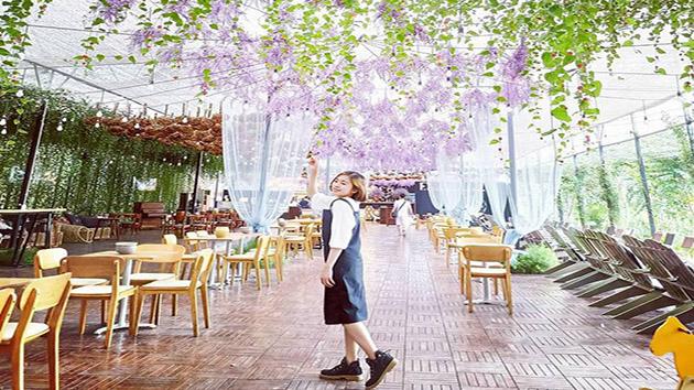 Thưởng thức cafe tại F cánh đồng hoa