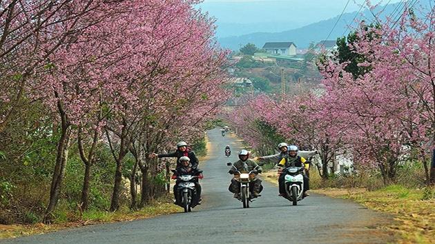 Những địa điểm lý tưởng nên tham quan bằng xe máy tại Đà Lạt