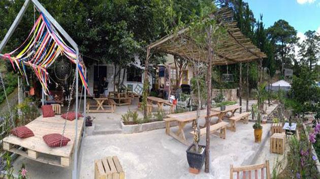 Sunshine Tím coffee Đà Lạt