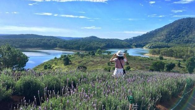 Hồ Tuyền Lâm - Một trong những hồ nước đẹp nhất ở Đà Lạt