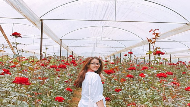 Không gian ngập tràn sắc hoa tại Làng hoa Vạn Thành Đà Lạt