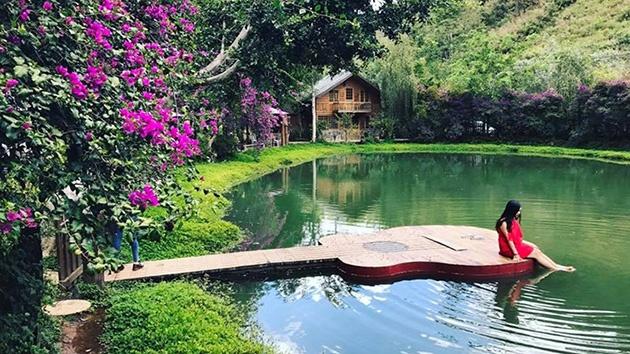 """Ma Rừng Lữ Quán - địa điểm """"check in"""" đậm chất thiên nhiên ở Đà Lạt"""