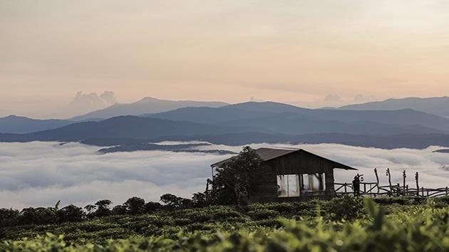 """Cầu gỗ Săn Mây - Địa điểm """"check in"""" tuyệt đẹp tại Đà Lạt"""