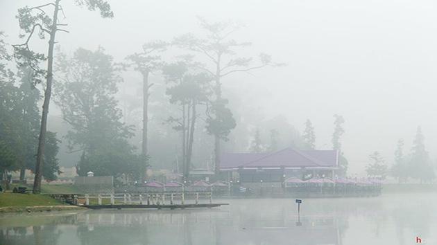Khí hậu Đà Lạt có sự phân bố rỏ rệt, mùa nắng - mùa mưa