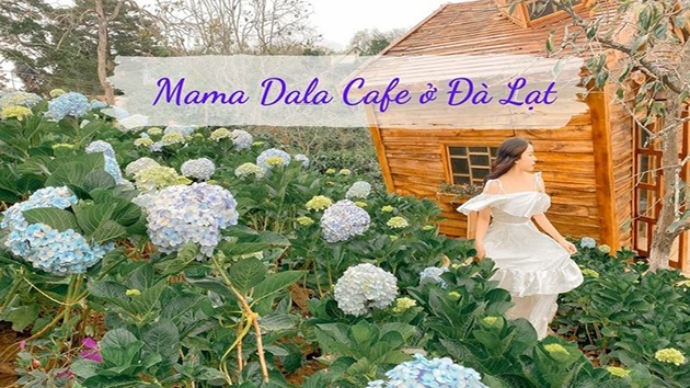 Mama Dala Cafe ở Đà Lạt