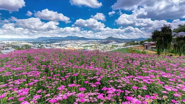 Thành phố Đà Lạt ngàn hoa