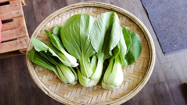 Rau cải thìa Đà Lạt