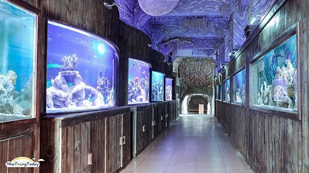 Thủy cung Trí Nguyên - Địa điểm không thể bỏ qua khi đến Nha Trang