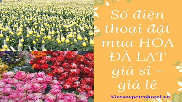 Số điện thoại đăt mua hoa Đà Lạt giá sỉ - giá lẻ